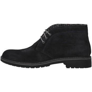 kengät Miehet Bootsit IgI&CO 6108633 BLUE