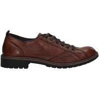 kengät Miehet Derby-kengät IgI&CO 6108311 BROWN