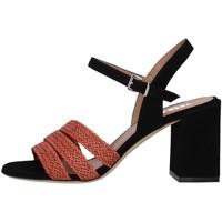 kengät Naiset Sandaalit ja avokkaat Tres Jolie 2034/BUY BROWN