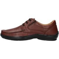kengät Miehet Derby-kengät Melluso U47038L BROWN