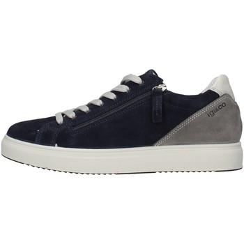 kengät Miehet Matalavartiset tennarit IgI&CO 5138900 BLUE
