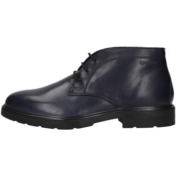 kengät Miehet Bootsit IgI&CO 4100111 BLUE