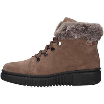 kengät Naiset Bootsit Stonefly 212221 BEIGE