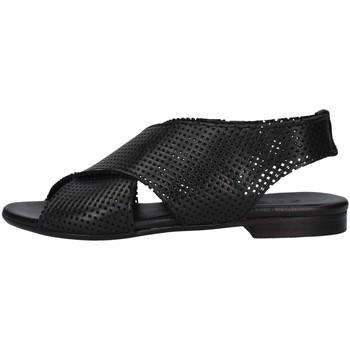 kengät Naiset Sandaalit ja avokkaat Zoe DAFFY064 BLACK