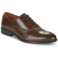 kengät Miehet Derby-kengät Pellet ACHILLE Ruskea