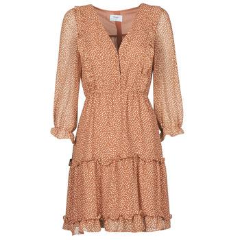 vaatteet Naiset Lyhyt mekko Betty London OBELLA Ruskea