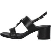 kengät Naiset Sandaalit ja avokkaat NeroGiardini E012264D BLACK