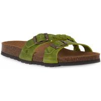 kengät Naiset Sandaalit Bioline 233 ALOHE INGRASSATO Verde