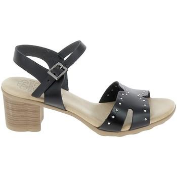 kengät Naiset Sandaalit ja avokkaat Porronet Sandale F12626 Noir Musta