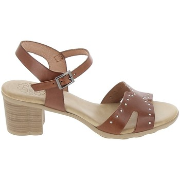 kengät Naiset Sandaalit ja avokkaat Porronet Sandale F12626 Marron Ruskea