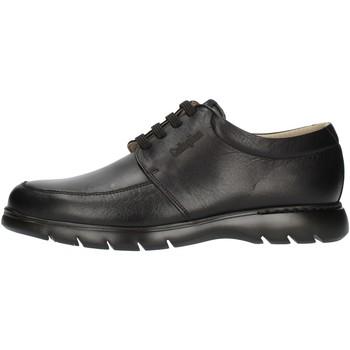 kengät Miehet Derby-kengät CallagHan 15912 Black