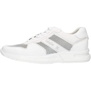 kengät Miehet Matalavartiset tennarit CallagHan 91314 White