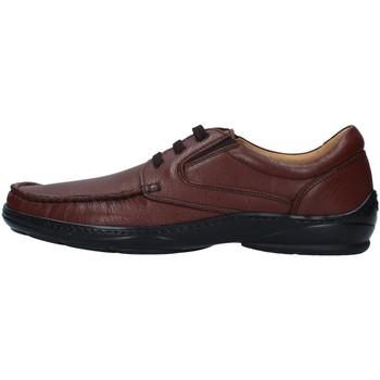 kengät Miehet Derby-kengät Melluso U47038A BROWN
