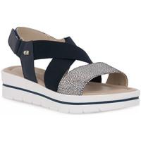 kengät Naiset Sandaalit ja avokkaat Valleverde BLU SANDALO Blu