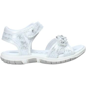 kengät Tytöt Sandaalit ja avokkaat Chicco 01065377000000 Valkoinen