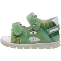 kengät Lapset Sandaalit ja avokkaat Falcotto 1500749 03 Vihreä