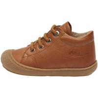 kengät Lapset Bootsit Naturino 2012889 31 Ruskea