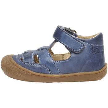 kengät Lapset Sandaalit ja avokkaat Naturino 2013292 01 Sininen