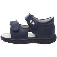 kengät Lapset Sandaalit ja avokkaat Falcotto 1500728 01 Sininen