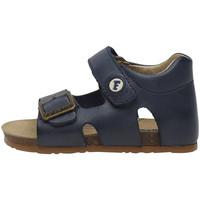 kengät Lapset Sandaalit ja avokkaat Falcotto 1500737 01 Sininen