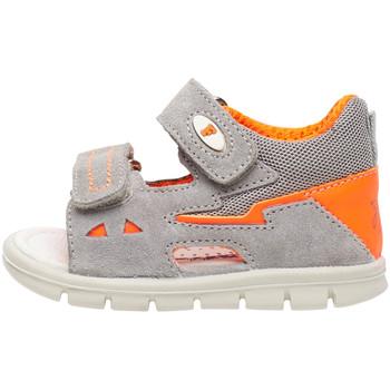 kengät Lapset Sandaalit ja avokkaat Falcotto 1500839 02 Harmaa