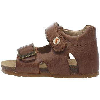 kengät Lapset Sandaalit ja avokkaat Falcotto 1500737 01 Ruskea