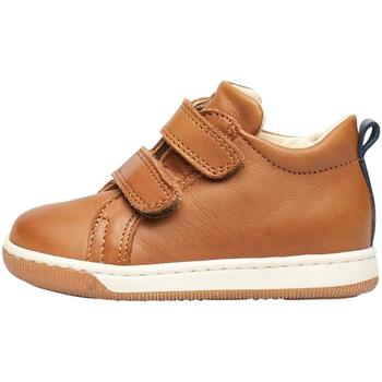 kengät Lapset Tennarit Falcotto 2012869 01 Ruskea