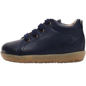 kengät Lapset Tennarit Falcotto 2014581 01 Sininen