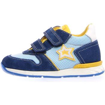 kengät Lapset Tennarit Falcotto 2012389 01 Sininen