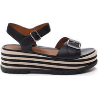kengät Naiset Sandaalit ja avokkaat Stonefly 213920 Musta