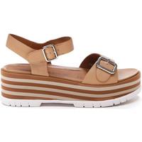 kengät Naiset Sandaalit ja avokkaat Stonefly 213920 Ruskea