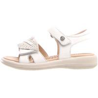 kengät Lapset Sandaalit ja avokkaat Naturino 502731 03 Valkoinen