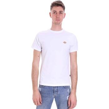 vaatteet Miehet Lyhythihainen t-paita Dickies DK0A4XDAWHX1 Valkoinen