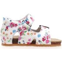 kengät Lapset Sandaalit ja avokkaat Falcotto 1500673 11 Valkoinen