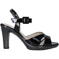 kengät Naiset Sandaalit ja avokkaat Melluso HR50137 Musta