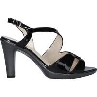kengät Naiset Sandaalit ja avokkaat Melluso HR50138 Musta