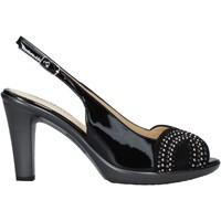 kengät Naiset Sandaalit ja avokkaat Melluso HR50117 Musta