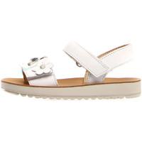 kengät Lapset Sandaalit ja avokkaat Naturino 502733 01 Valkoinen