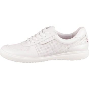 kengät Naiset Matalavartiset tennarit Josef Seibel Caren 33 Valkoiset