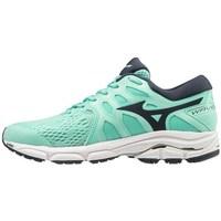 kengät Naiset Fitness / Training Mizuno Wave Equate 4 Mustat, Vihreät
