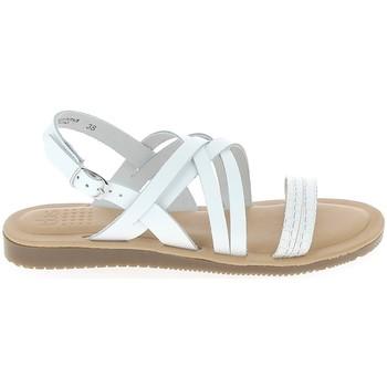 kengät Naiset Sandaalit ja avokkaat TBS Blaudia Croco Blanc Valkoinen