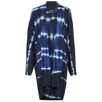 vaatteet Naiset Neuleet / Villatakit Desigual BRUMA Sininen