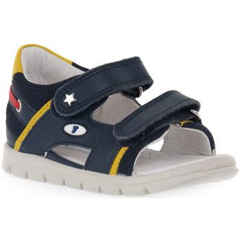 kengät Tytöt Sandaalit ja avokkaat Naturino FALCOTTO 0C02 NEW SAILING Blu