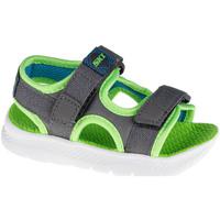 kengät Lapset Urheilusandaalit Skechers C-Flex Sandal 2.0 Hydrowaves Grise