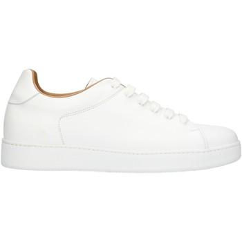 kengät Miehet Matalavartiset tennarit Rogal's MUR1 White