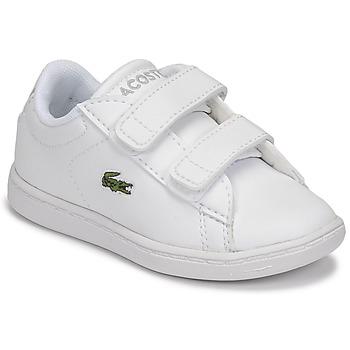 kengät Lapset Matalavartiset tennarit Lacoste CARNABY EVO BL 21 1 SUI Valkoinen