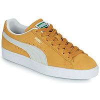 kengät Matalavartiset tennarit Puma SUEDE Keltainen / Valkoinen
