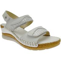 kengät Naiset Sandaalit ja avokkaat Riposella RIP11244bia bianco