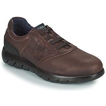 kengät Miehet Derby-kengät CallagHan PLUVIAM Ruskea