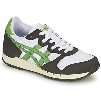 kengät Matalavartiset tennarit Onitsuka Tiger ALVARADO Vihreä / Musta / Valkoinen